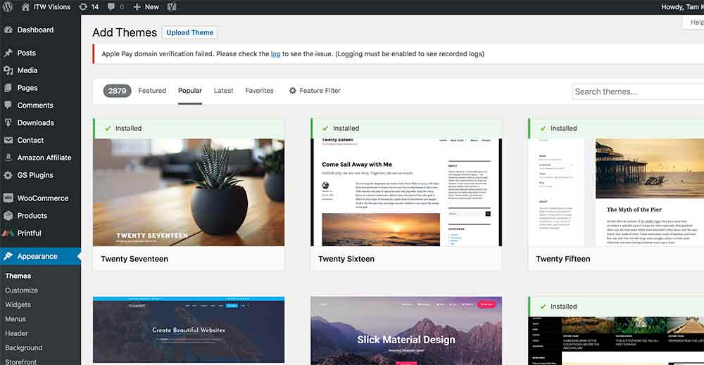 how to use free WordPress themes
